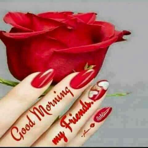 NV फनी फोटोज़ - Good Morning my friends . - ShareChat
