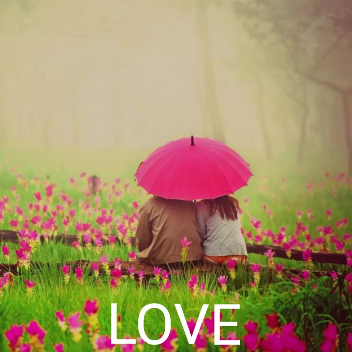 🌹प्रेमरंग - WA LOVE - ShareChat