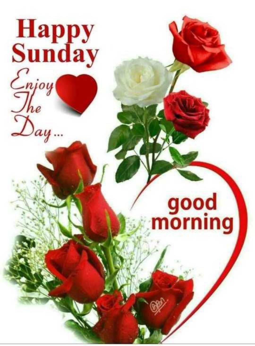 🌅 Good Morning - Happy Sunday Enjoy Day . . . good morning - ShareChat
