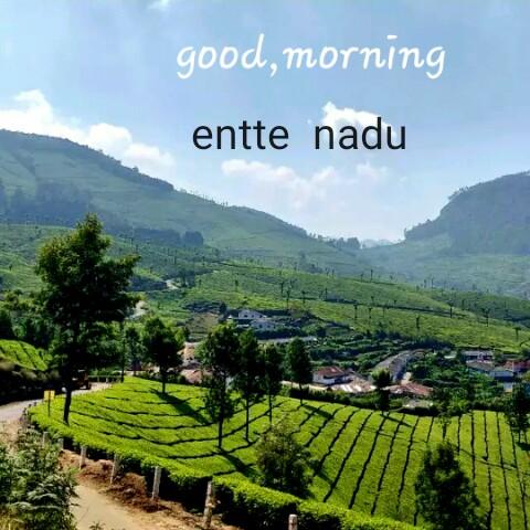 💌 പ്രണയം - good , morning entte nadu - ShareChat
