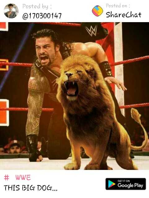 🕺FASHION - Posted by : @ 170300147 Posted on ShareChat # WWE THIS BIG DOG . . . GET IT ON Google Play - ShareChat