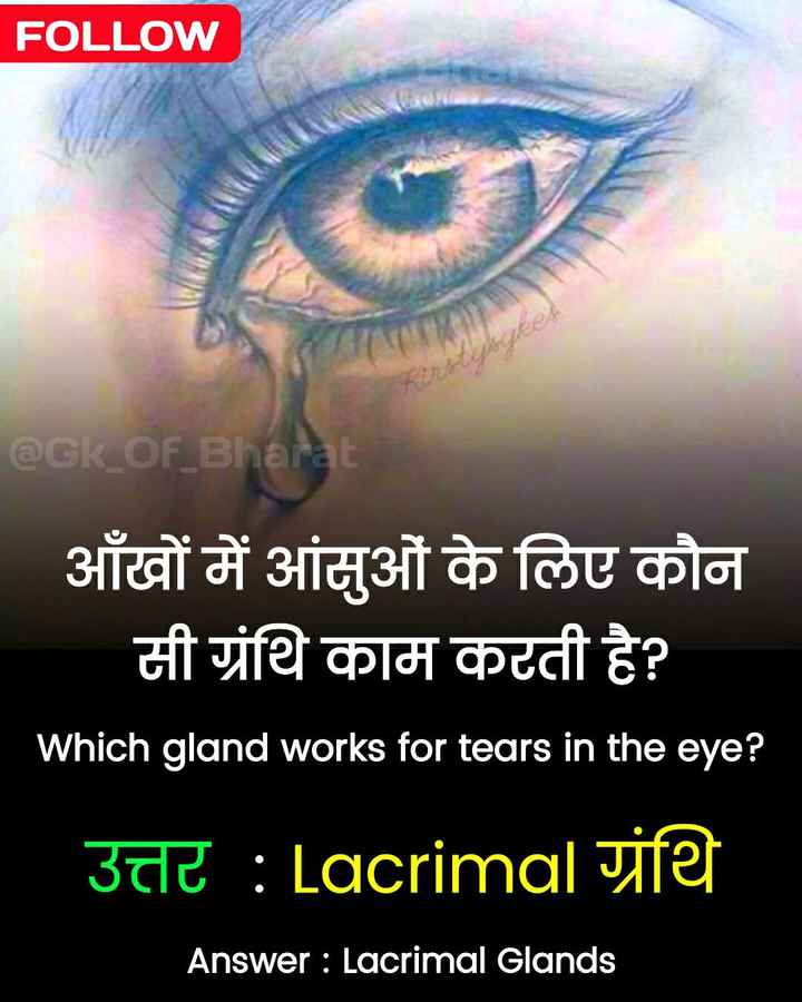 📰GK & करेंट अफेयर्स💡 - FOLLOW @ Gk _ OF _ Bharat आँखों में आंसुओं के लिए कौन सी ग्रंथि काम करती है ? Which gland works for tears in the eye ? उत्तर : Lacrimal ग्रंथि Answer : Lacrimal Glands - ShareChat