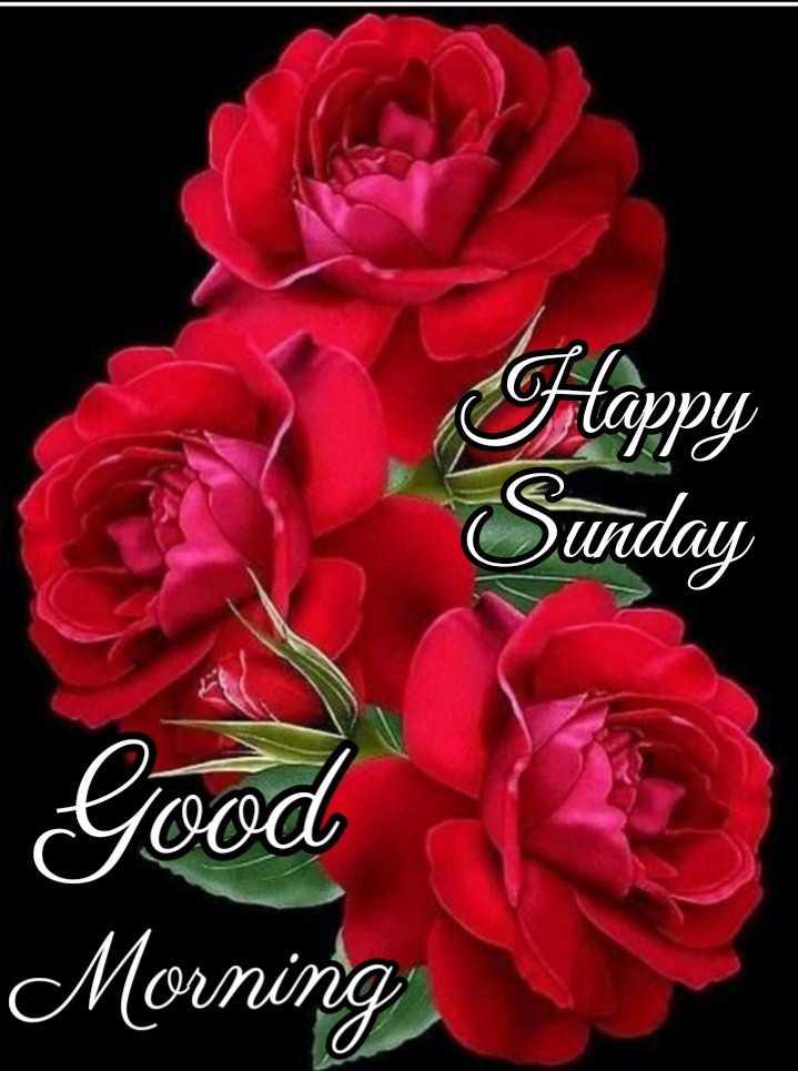 🌅 Good Morning - Flappy Sunday - Good Morning - ShareChat