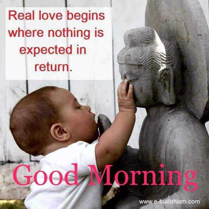 🌞 Good Morning🌞 - Real love begins where nothing is expected in return . Good Mornin www . e - buddhism . com - ShareChat