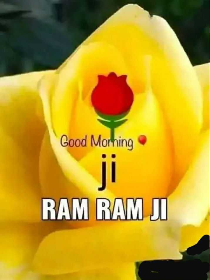 🌞 Good Morning🌞 - Good Morning RAM RAM JI - ShareChat