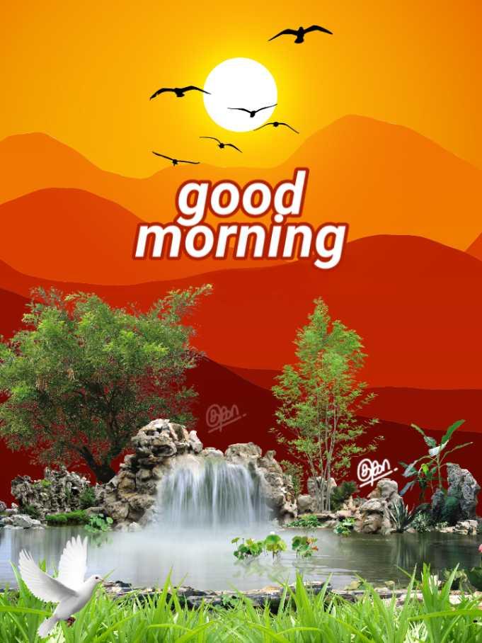 🌞 Good Morning🌞 - good morning on . - ShareChat