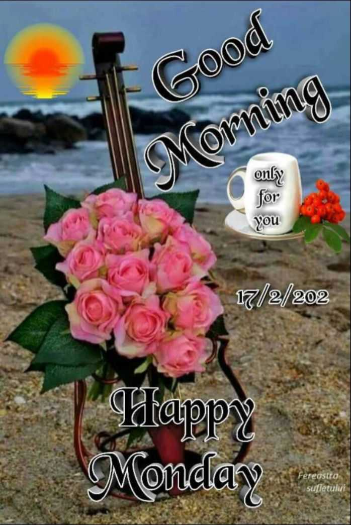 🌞 Good Morning🌞 - Good Morning only for you 17 / 2 / 202 Ifappy Monday Fereastro sufletului - ShareChat