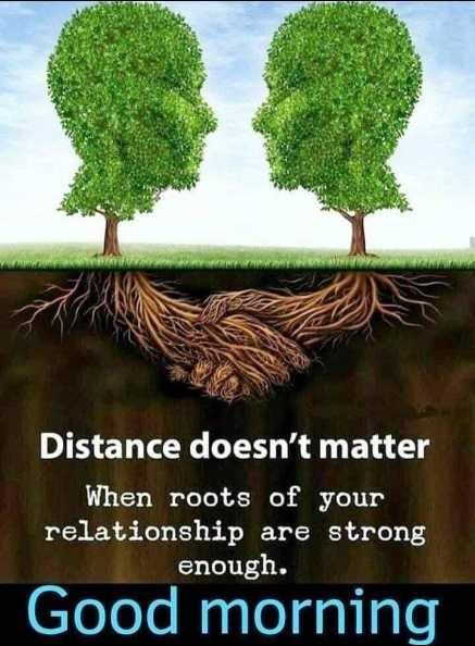🌞 Good Morning🌞 - Distance doesn ' t matter When roots of your relationship are strong enough . Good morning - ShareChat
