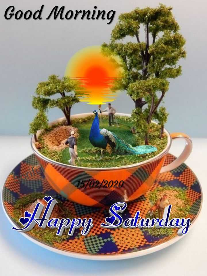 🌞 Good Morning🌞 - Good Morning 15 / 02 / 2020 S Happy Dolurday - ShareChat