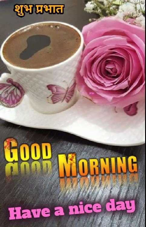 🌞 Good Morning🌞 - शुभ प्रभात GOOD anon MORNING Have a nice day - ShareChat