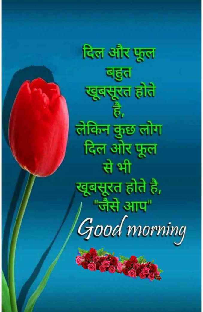 🌞 Good Morning🌞 - दिल और फूल बहुत खूबसूरत होते लेकिन कुछ लोग दिल ओर फूल से भी खूबसूरत होते है , जैसे आप Good morning - ShareChat