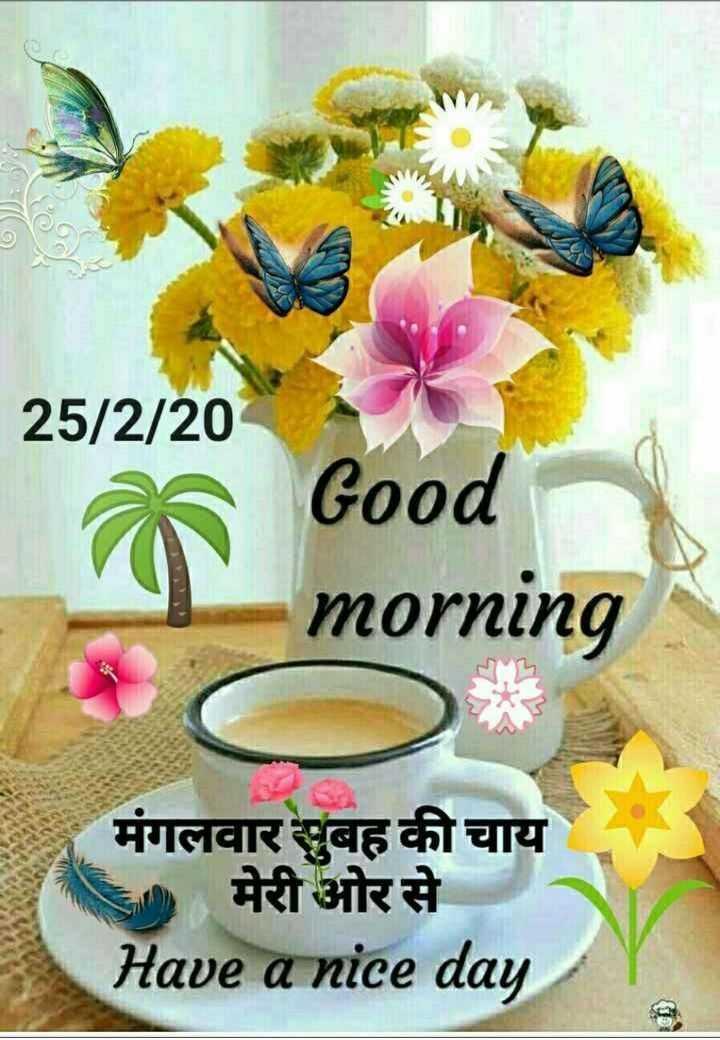 🌞 Good Morning🌞 - 25 / 2 / 20 Good morning मंगलवार सुबह की चाय । मेरी ओर से Have a nice day - ShareChat