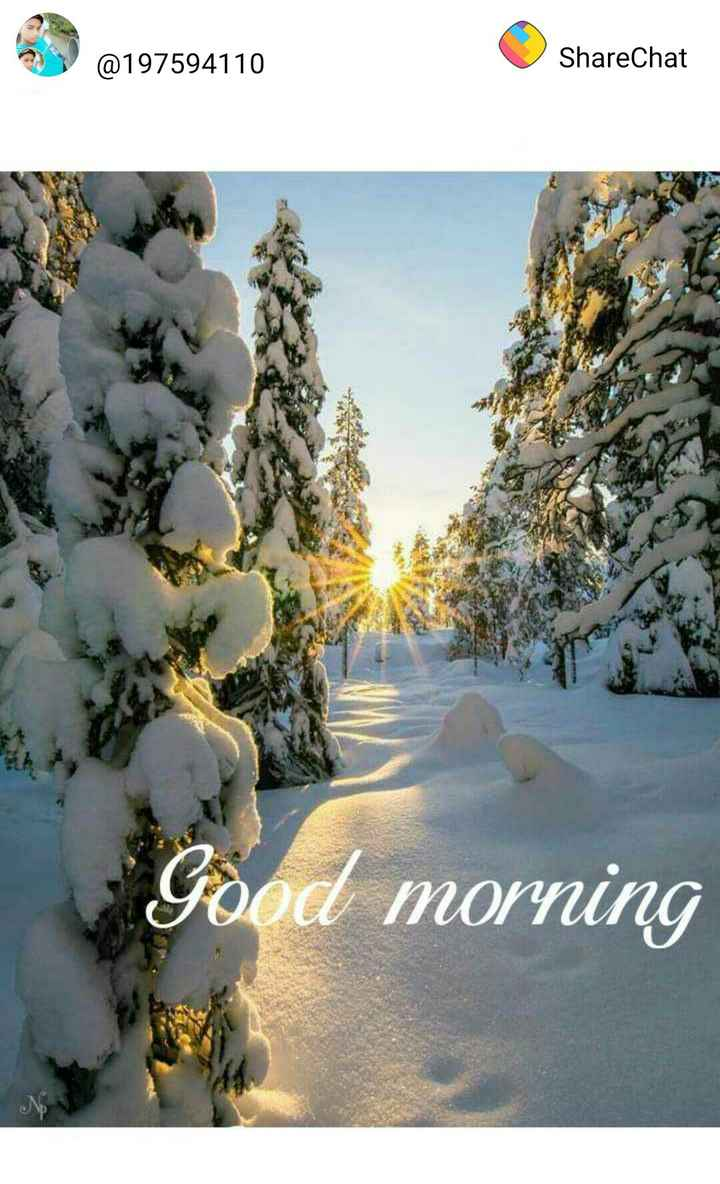 🌞 Good Morning🌞 - @ 197594110 ShareChat Good morning - ShareChat