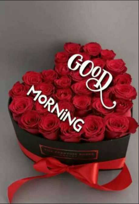 🌞 Good Morning🌞 - MORNING GOO - ShareChat