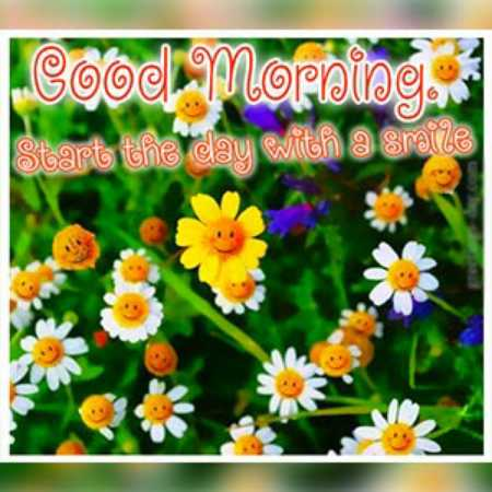 🌞Good Morning🌞 - Good Morn so moralog . Start the day with a smile - ShareChat