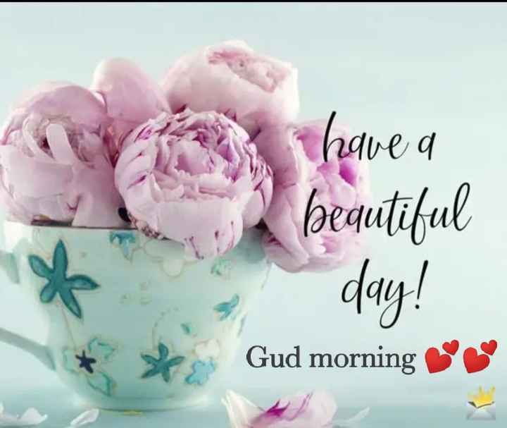 🌞 Good Morning🌞 - Vi have a beautiful - day ! Gud morning - ShareChat