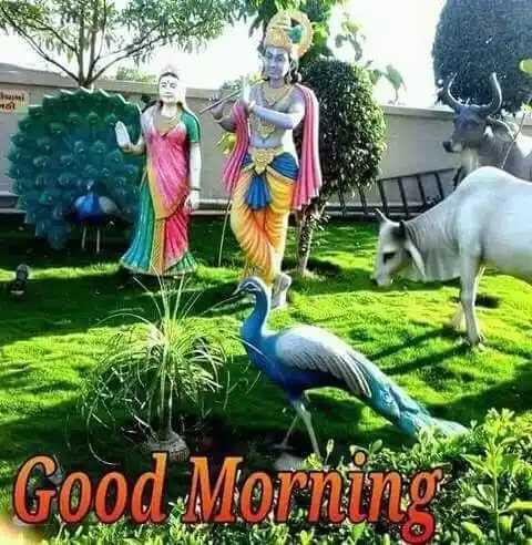🌞 Good Morning🌞 - at Good Morning - ShareChat