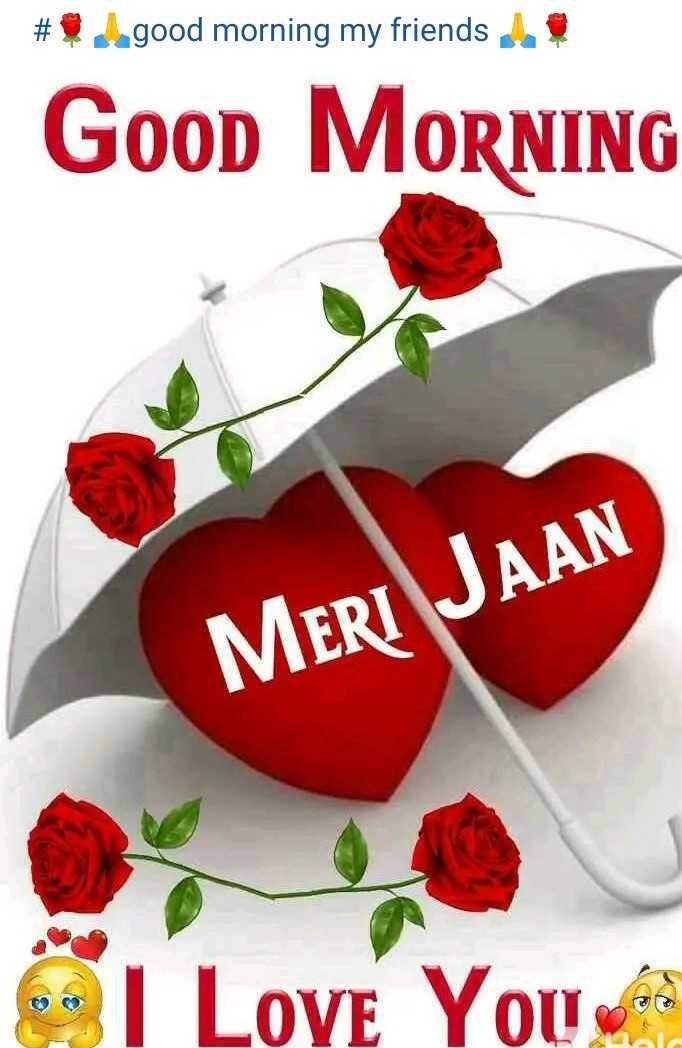 🌞 Good Morning🌞 - # $ good morning my friends ! Good MORNING MERI JAAN I Love You - ShareChat
