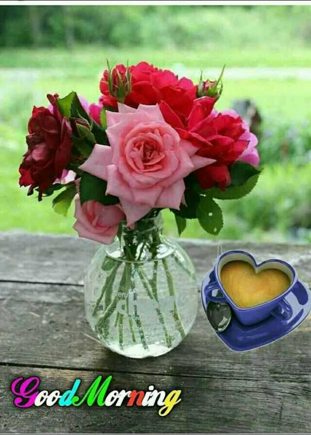 🌅 Good Morning - Good Morning - ShareChat