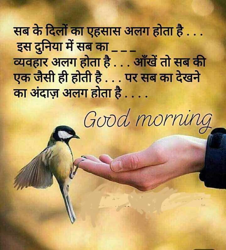 🌞 Good Morning🌞 - सब के दिलों का एहसास अलग होता है . . . इस दुनिया में सब का . . . व्यवहार अलग होता है . . . आँखें तो सब की एक जैसी ही होती है . . . पर सब का देखने का अंदाज़ अलग होता है . . . . Good morning - ShareChat