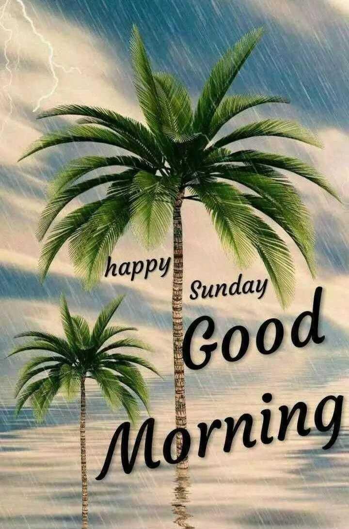 🌞 Good Morning🌞 - happy ! Sunday k Good Morning ESTE TRAITEEDIA B - ShareChat