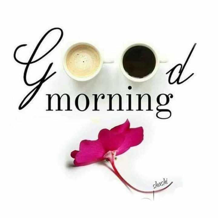 🌅 Good Morning - / morning shashi - ShareChat