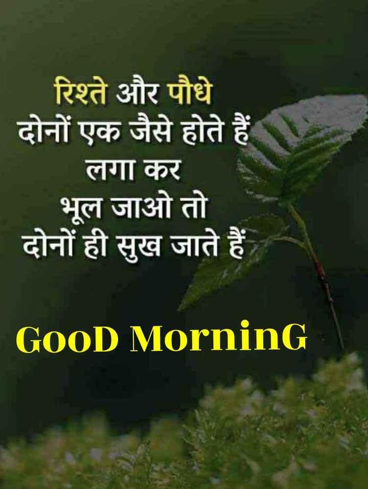 🌞 Good Morning🌞 - रिश्ते और पौधे दोनों एक जैसे होते हैं लगा कर भूल जाओ तो दोनों ही सुख जाते हैं GOOD Morning - ShareChat