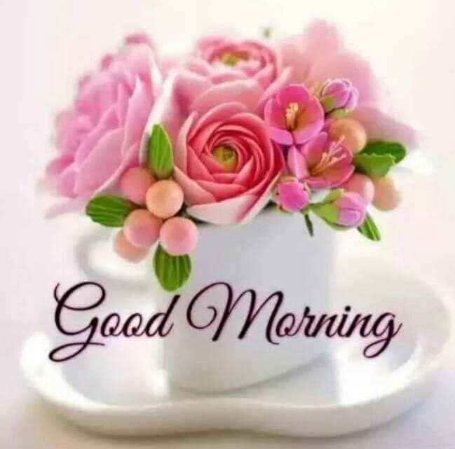 🌞 Good Morning🌞 - Geod Morning - ShareChat