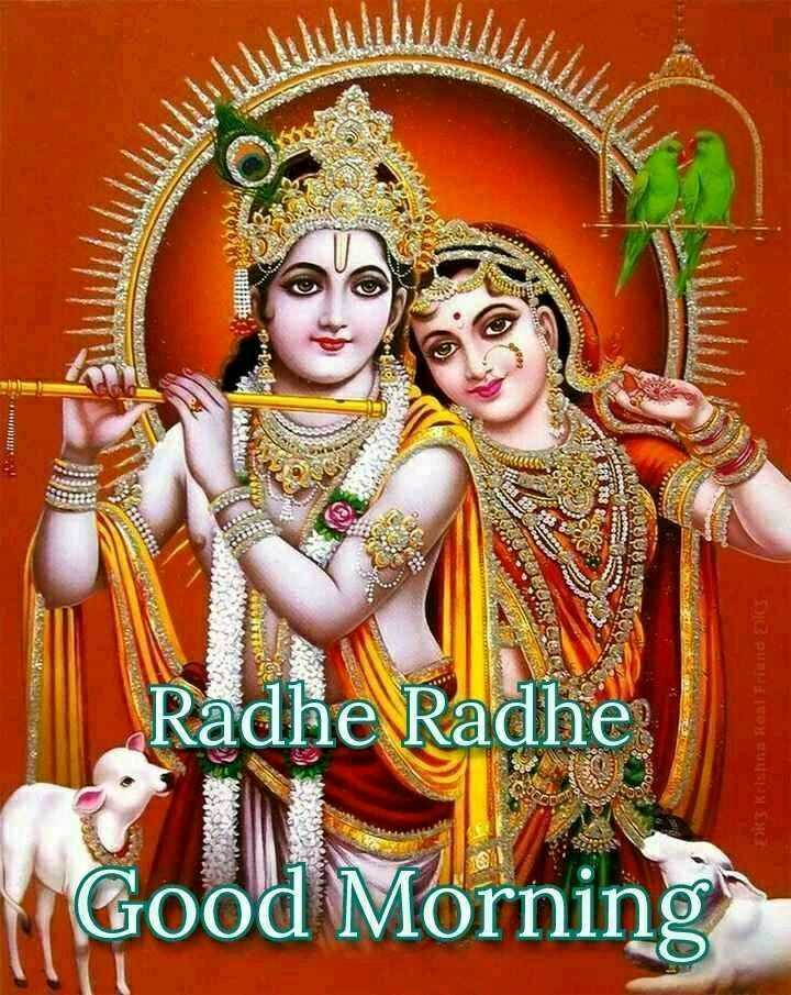 🌞 Good Morning🌞 - IT Radhe Radhe DOCUMENTOS Good Morning - ShareChat