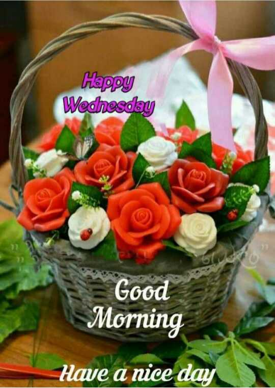 🌞 Good Morning🌞 - Happy Wednesday Good Morning Have a nice day - ShareChat
