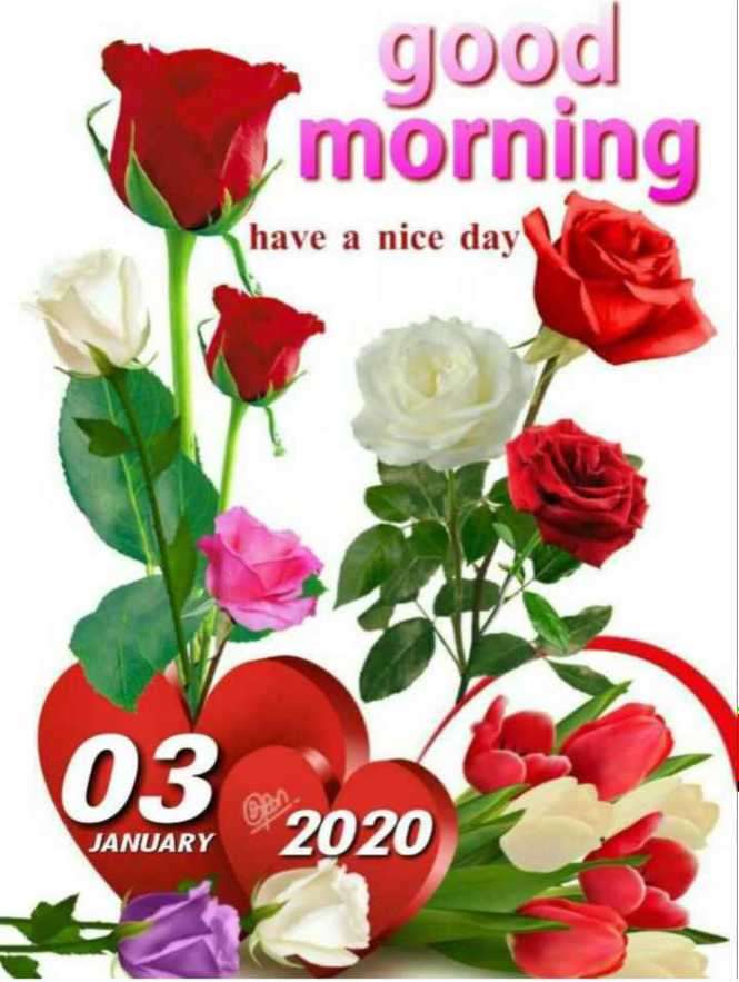 🌞 Good Morning🌞 - good morning have a nice day ( 03 2020 JANUARY - ShareChat
