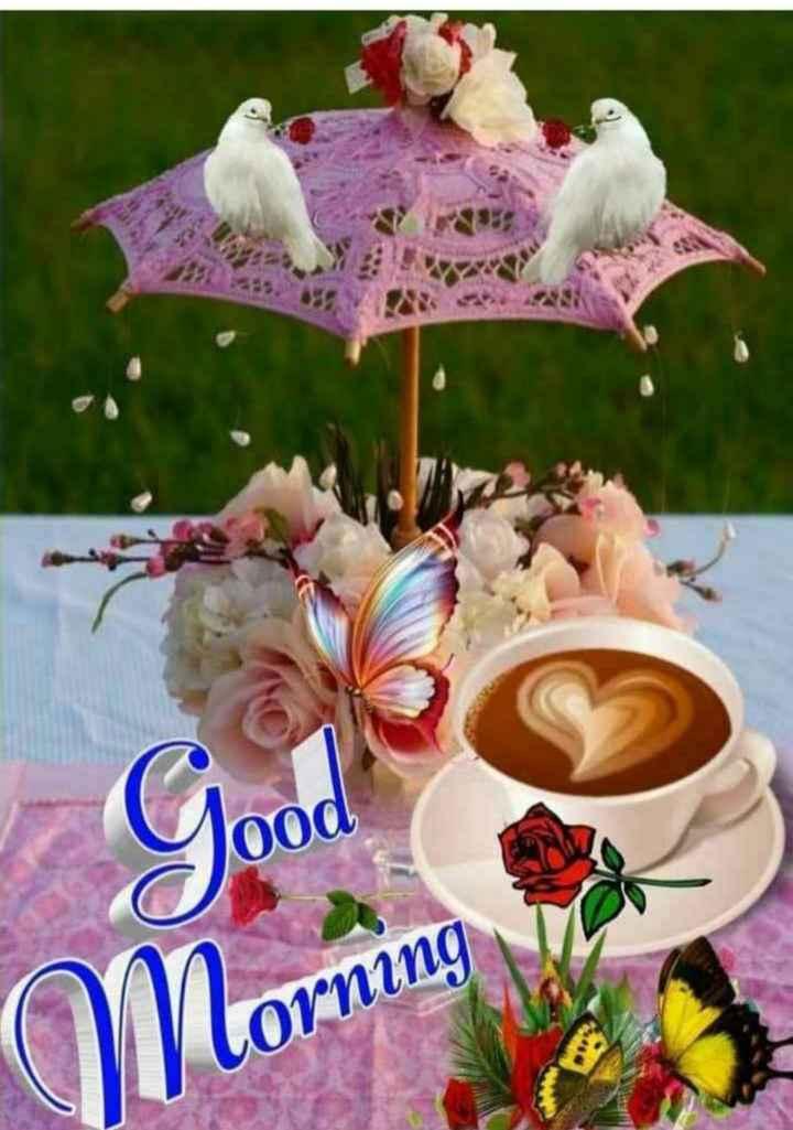 🌞 Good Morning🌞 - lood Morning Corning - ShareChat