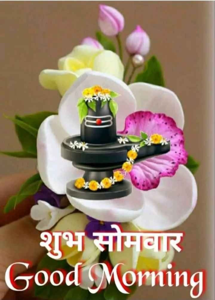 🌅 Good Morning - शुभ सोमवार Good Morning - ShareChat