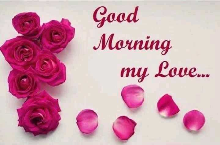 🌞Good Morning🌞 - Good Morning my Love . . . - ShareChat