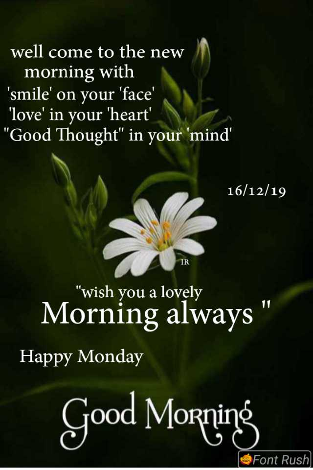 🌅 Good Morning - well come to the new morning with ' smile ' on your ' face ' ' love ' in your ' heart ' Good Thought in your ' mind ' 16 / 12 / 19 VIR wish you a lovely Morning always ' Happy Monday Good Morning Font Rush - ShareChat