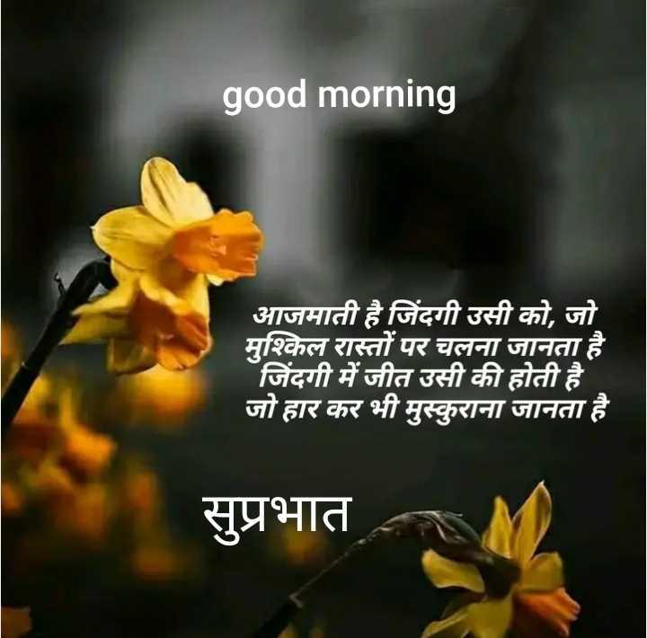 🌞 Good Morning🌞 - good morning आजमाती है जिंदगी उसी को , जो मुश्किल रास्तों पर चलना जानता है । जिंदगी में जीत उसी की होती है । जो हार कर भी मुस्कुराना जानता है । सुप्रभात - ShareChat