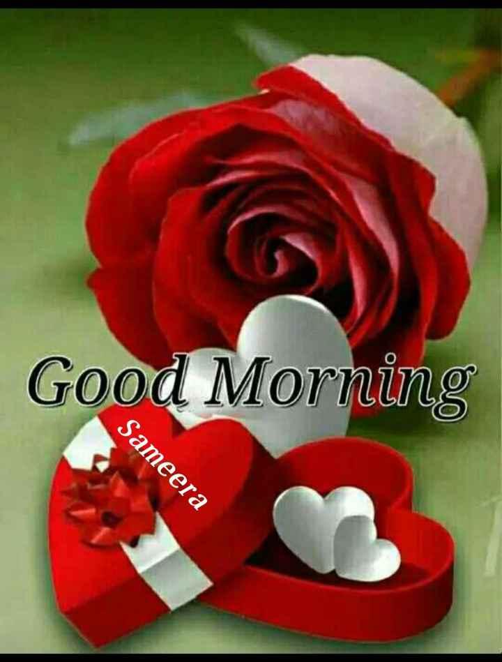 🌞 Good Morning🌞 - Good Morning Sameera - ShareChat