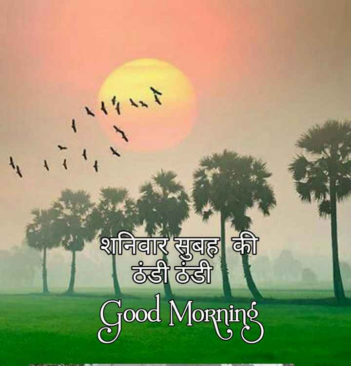 🌞 Good Morning🌞 - शनिवार सुबह की ठंडी ठंडी Good Morning - ShareChat