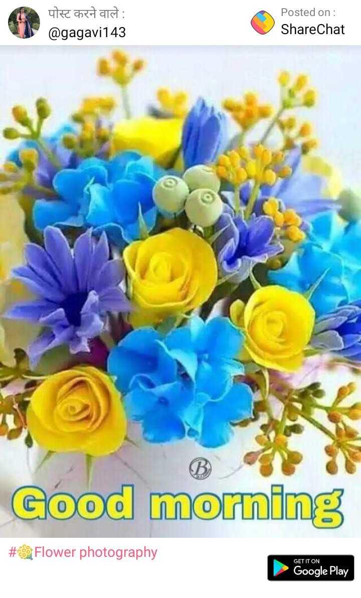 🌞Good Morning🌞 - पोस्ट करने वाले : @ gagavi143 Posted on : ShareChat Good morning # 89 Flower photography GET IT ON Google Play - ShareChat