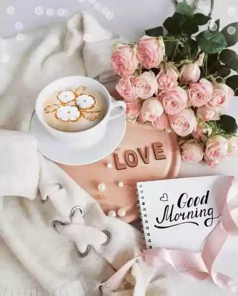 🌞 Good Morning🌞 - LOVE - ShareChat