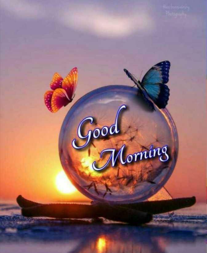 🌞 Good Morning🌞 - Good ' Morning - ShareChat