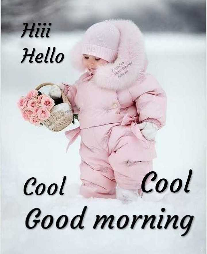 🌞 Good Morning🌞 - нііі Hello Posted by Tania Soumia Adhikart roues Sou un Cool Cool Good morning - ShareChat