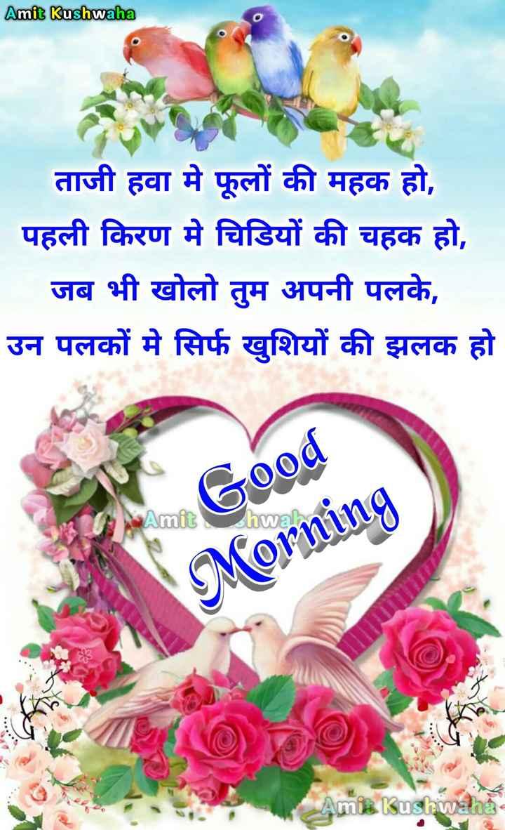 🌞 Good Morning🌞 - Amit Kushwaha ताजी हवा मे फूलों की महक हो , पहली किरण मे चिडियों की चहक हो , जब भी खोलो तुम अपनी पलके , उन पलकों में सिर्फ खुशियों की झलक हो hwa dhe me Good Morning Kushiwaha - ShareChat