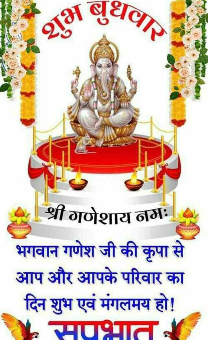 🌞 Good Morning🌞 - शुभब श्री गणेशाय नमः । भगवान गणेश जी की कृपा से आप और आपके परिवार का दिन शुभ एवं मंगलमय हो ! सपभात - ShareChat