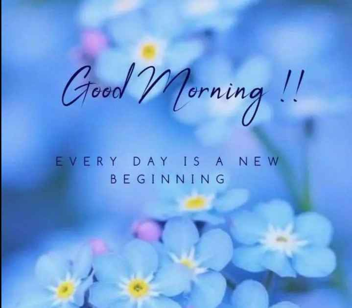 🌞 Good Morning🌞 - Good Morning ! ! EVERY DAY IS A NEW BEGINNING - ShareChat