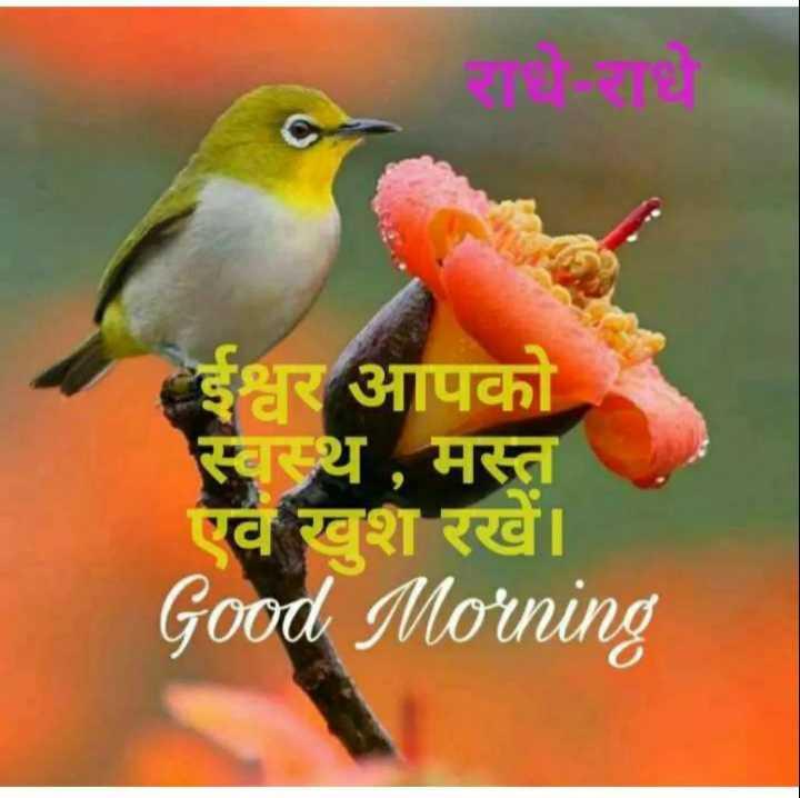 🌞 Good Morning🌞 - राधे - राय ईश्वर आपको स्वस्थ , मस्त एवं खुश रखें । Good Morning - ShareChat