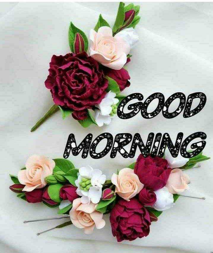 🌞 Good Morning🌞 - . MORAING GOOD 2 . . - ShareChat