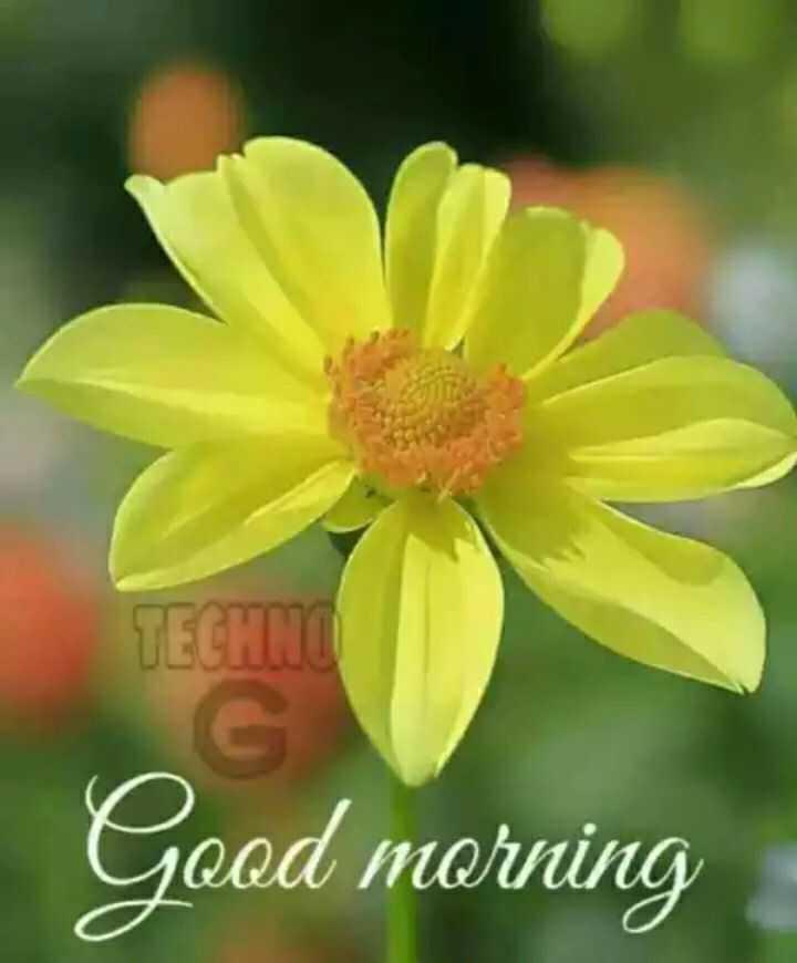 🌅 Good Morning - TECHNO Good morning - ShareChat
