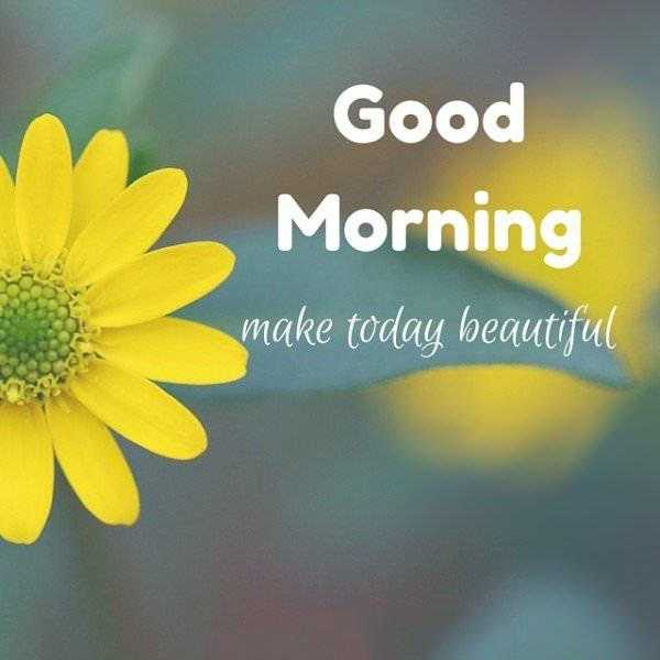 🌞 Good Morning🌞 - Good Morning make today beautiful - ShareChat