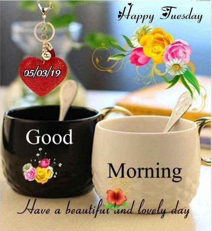 🌞Good Morning🌞 - Happy Tuesday 05 / 03 / 19 Good Morning Have a beautifur und lovely day - ShareChat